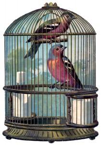 bird+cage+vintage+image+GraphicsFairy004sm