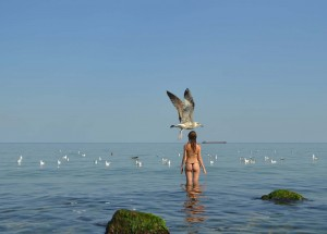 A seagull passes a girl preparing to ref