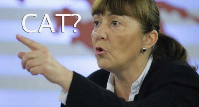 Monica Macovei solicita ANAF-ului sa spuna ce sume a recuperat de la marii datornici in ultimile 3 luni