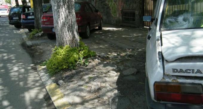Asociatia Constanta ia Atitudine: Scrisoare deschisa in privinta locurilor de parcare din orasul Constanta