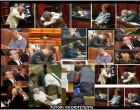 Hoţi, corupţi, chiulangii, putori incompetente, ghici ciuperca cine-s parlamentarii tarii