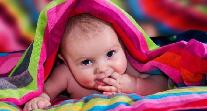 Tu stii ce se intampla in fiecare saptamana a sarcinii?