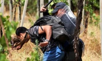 CE: Ungaria îşi poate proteja frontiera cum doreşte REVISTA PRESEI