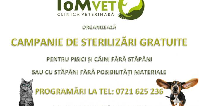 EVENIMENT! ToM VET organizează o campanie de sterilizare gratuită pe o perioadă nedeterminată!
