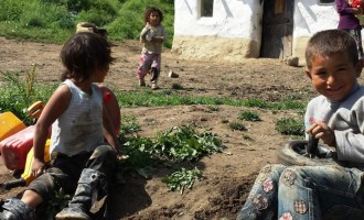 Constanţa, hai că se poate! VIDEO – mobilizare exemplară pentru o cauză umanitară