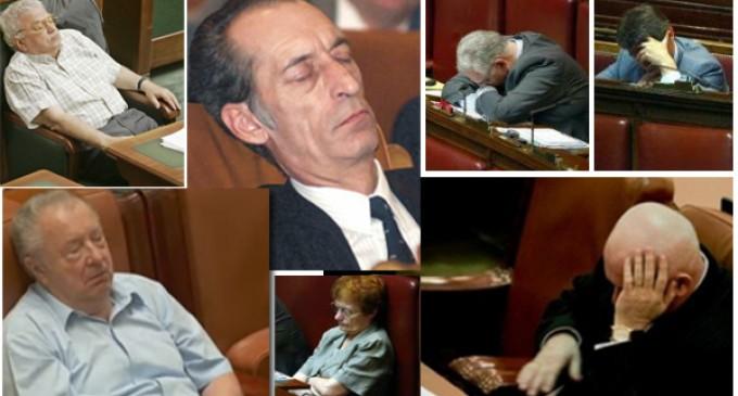 Senat: Parlamentarii raman in numar de 500. Ineficienti. Referendumul a fost degeaba….