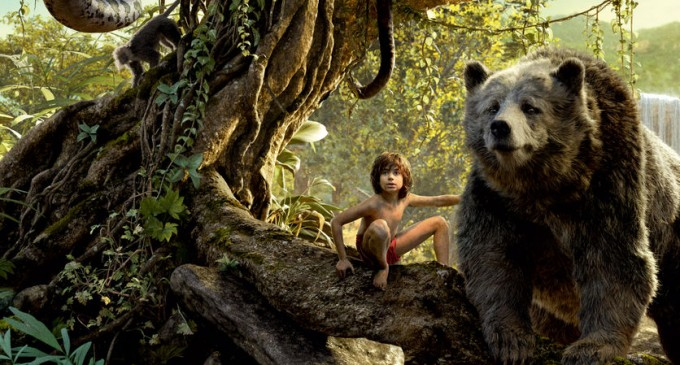 Prezentare a filmului The Jungle Book!