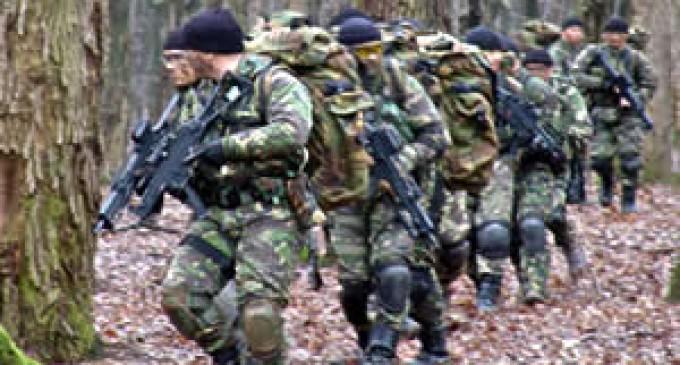 O demonstrație de forță în flancul estic al NATO