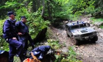 Informații la zi din Linia Întâi a NATO