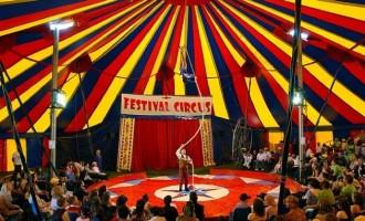 A plecat circul a venit CAL-VARUL!