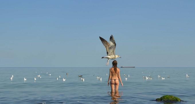Marea Neagră sub diferite nuanțe