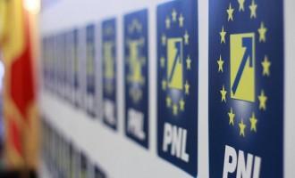 Alina Gorghiu și-a depus demisia din funcția de președinte al PNL