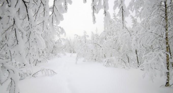 Ninge Doamne-n noi, fiindcă suntem… goi!