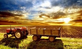 Cele mai profitabile afaceri agricole, in ce sa investesti din 2017
