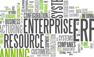 Detii sau reprezinti o companie? De ce sa implementezi un ERP