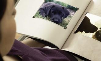 De ce moartea câinelui e uneori dureroasă și asemănătoare cu cea a unei persoane apropiate