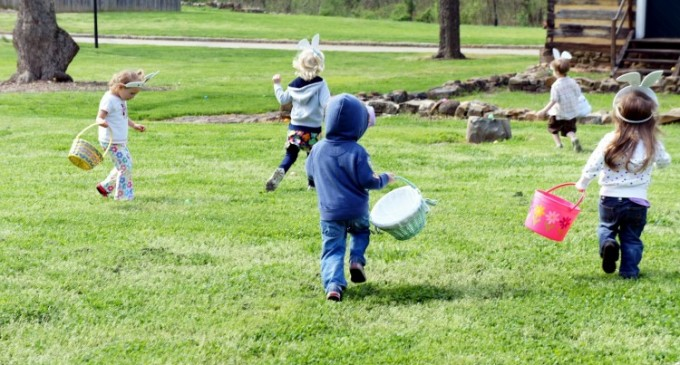 CONCURS: Caută ouăle în iarbă! Indiciu: găseşte mai întâi iarba!