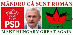 PSD s-a înscris în UDMR
