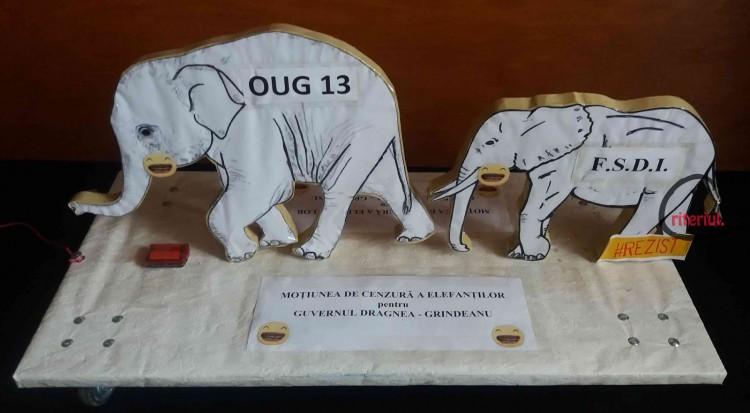 Motiunea de cenzura a elefantilor