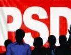 40 la sută din populaţie s-a înscris în PSD