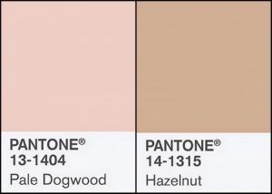 pale dogwood hazelnut