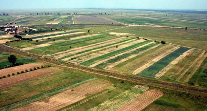 Terenuri agricole de vanzare, oportunitati de business