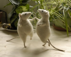 mice-can-dance-dancing-little-animals-28662996-700-565