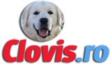 clovis.ro