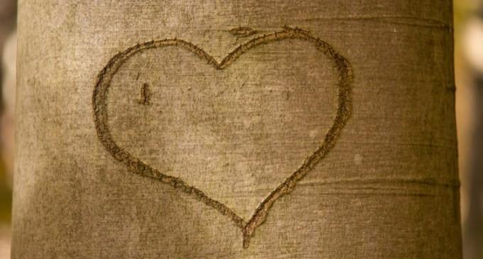 Cele mai intalnite mituri despre relatii