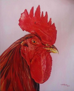 red-cock--0-20111230023619