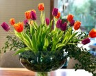 Ce preferinte au membrii generatiilor X si Y din Brasov cand vine vorba de achizitia de flori online