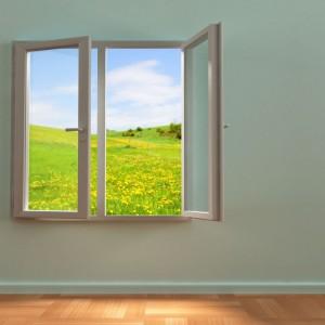 hornbach fereastra