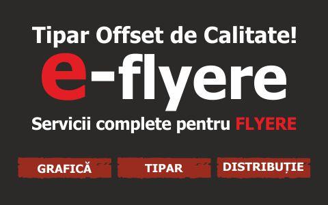 logo e-flyere