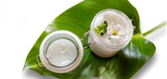 Cele mai populare plante folosite in cosmetica bio