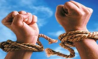 Reflecții despre Manifestarea Libertății