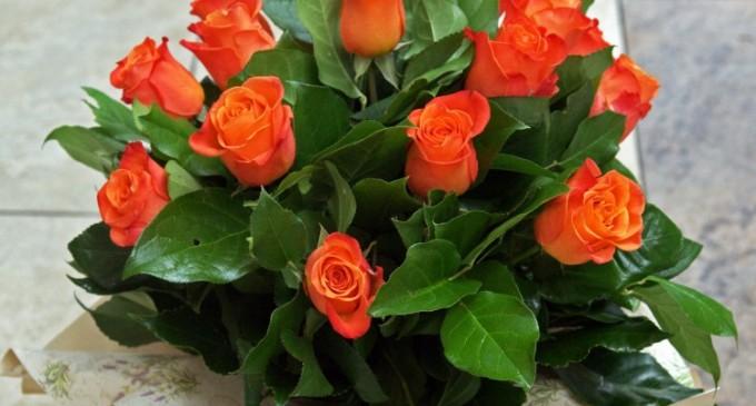 Cum alegi cea mai buna florarie online din Bucuresti?