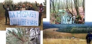 Constanța este o închisoare a sedentarismului? / / Drumeție in rezervația Hagieni – noiembrie 2018