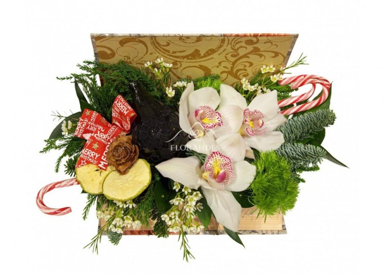 aranjament_floral_orhidee_alba_si_brad_AFB-1024x728