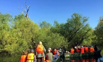3 motive pentru alege un program de Birdwatching pe un hotel plutitor in Delta Dunarii