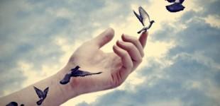 Trăim conform libertăţii noastre…