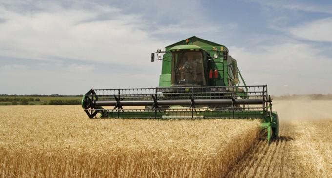 Agribusiness: O companie fintech nigeriană cu finanțare de un miliard de euro va da credite agricultorilor și micilor companii est-europene – Agricultura