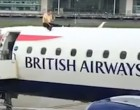 VIDEO Marea Britanie: Un protestatar s-a urcat pe un avion și nu a mai putut să coboare – International