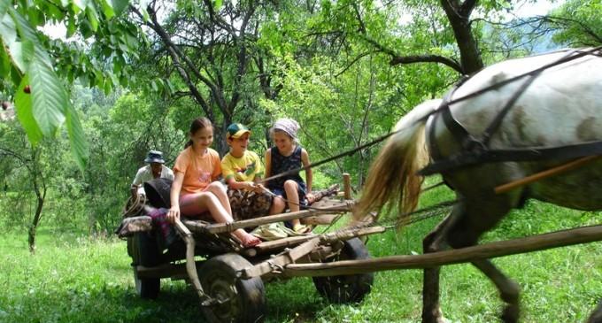 Copiii dispăruți de șase zile de la o stână din Vaslui au fost găsiți – Esential