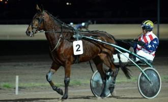 Premiera/Primul cal din Romania care a reușit sa câștige un loc pe podium in concursurile internationale