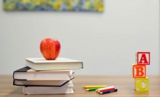 Avantajele de a învăța limba engleză direct de la un profesor nativ