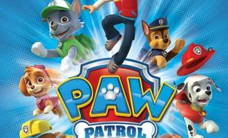Cauți jucării noi Paw Patrol pentru copilul? Nu căuta mai departe, pentru că noi avem cele mai bune recomandări pentru tine