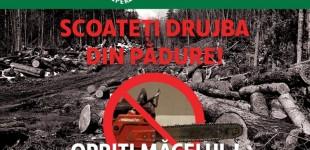 """""""Scoateți drujba din pădure!"""" -protest al ecologiștilor din România"""