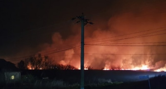 Doamna subprefect de Prahova, Maria Mihaela Duta, s-a implicat prompt in situatia incendiului de la padurea Scrovistea