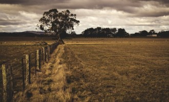 Imprejmuirea unui teren: 5 aspecte importante de care sa se tina cont