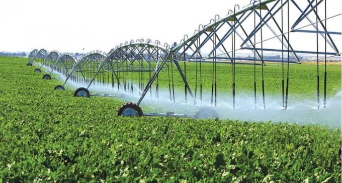 Ecologiştii cer deblocarea subvenţiilor APIA pentru fermieri şi declararea stării de calamitate din cauza secetei